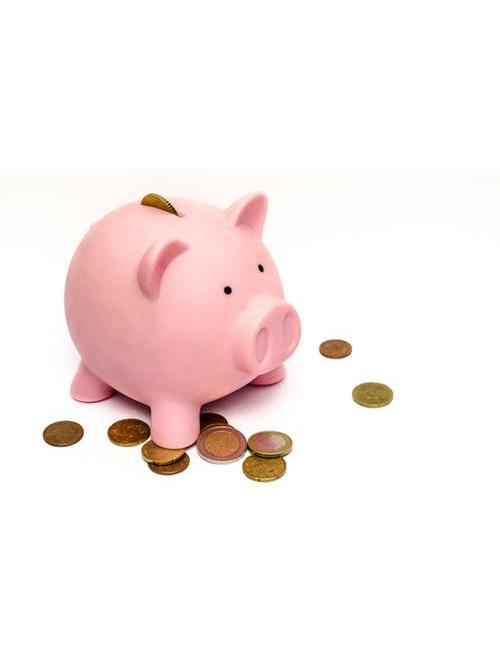 Fidfund investment